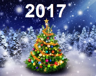 в_чем_встречать_новый_год_2017