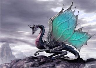 как угодить водяному дракону