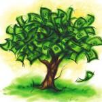 денежное_дерево_denegnoe_derevo
