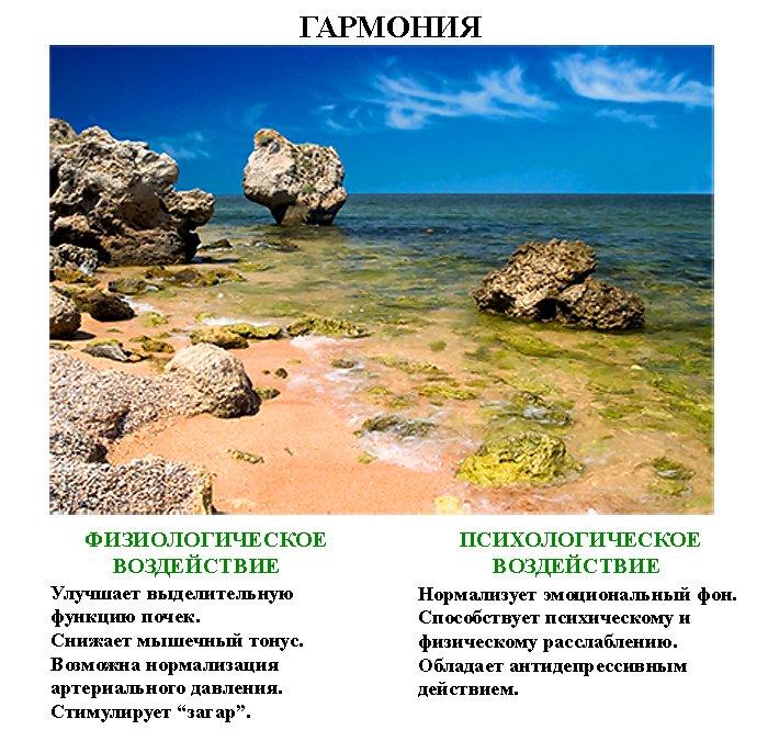 волшебные_картинки_volshebnye_kartinki (2)