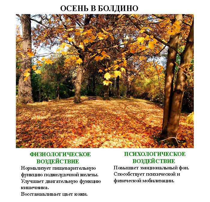 лечебные_картинки_leghebnue_kartinki (3)