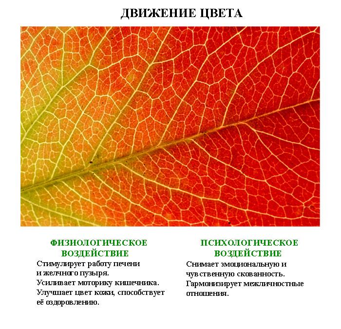лечебные_картинки_leghebnue_kartinki (4)