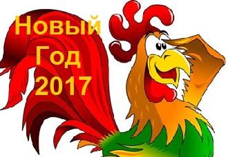 novui_god_2017_kak_vstreghat