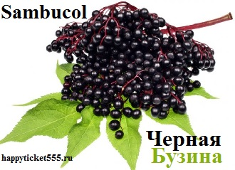 ambucol_Black_ Elderberry