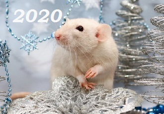 как_встречать_новый_год_2020